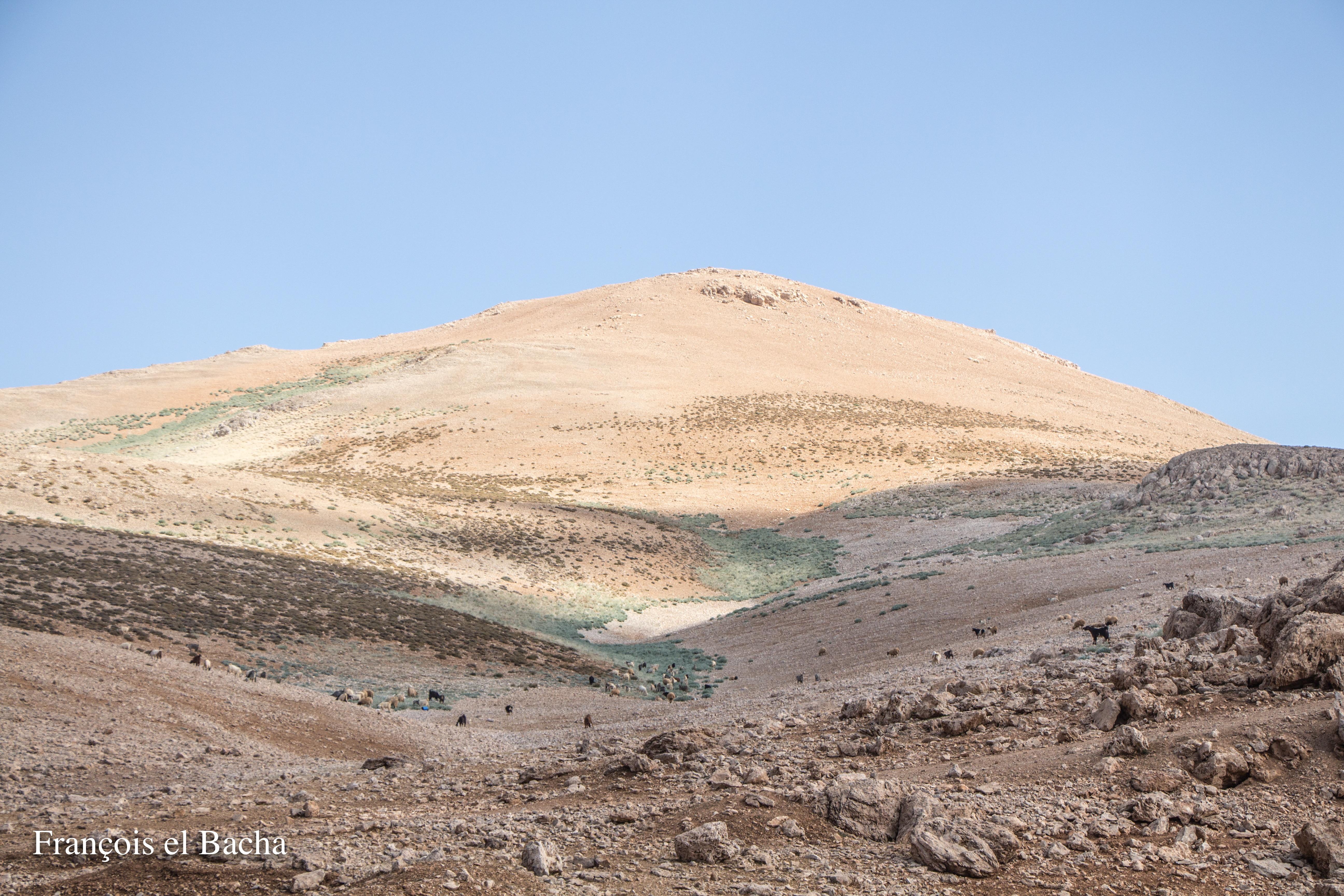 Paysages sur le chemin de randonnée menant à Kornet Saouda. Crédit Photo: François el Bacha, tous droits réservés.