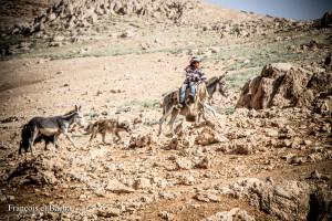 Scènes pastorales sur le chemin de randonnée menant à Kornet Saouda. Crédit Photo: François el Bacha, tous droits réservés.