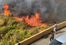 Des gens essayant de combattre l'incendie du côté de la localité de Saïda. Crédit Photo: NNA